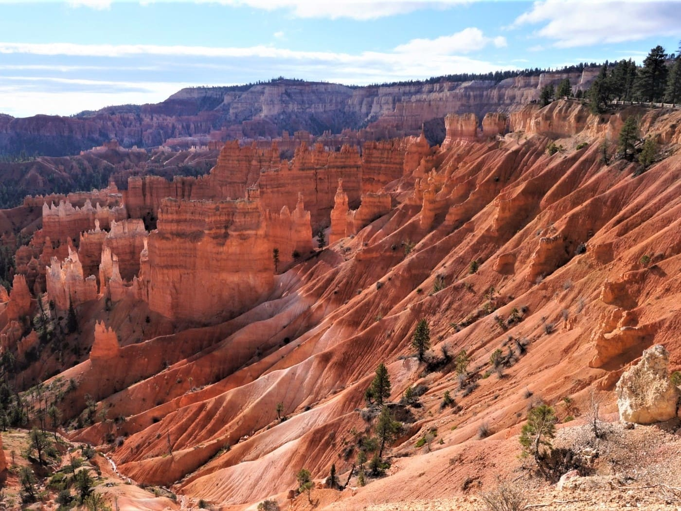 Bryce Canyon, la vie en orange